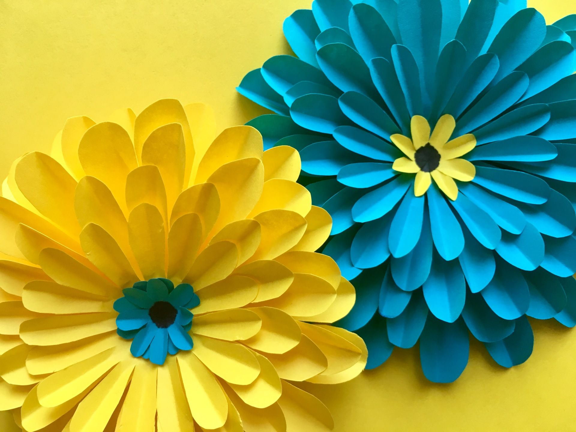 Paper flowers are so easy to make and so useful! They can be used as ...