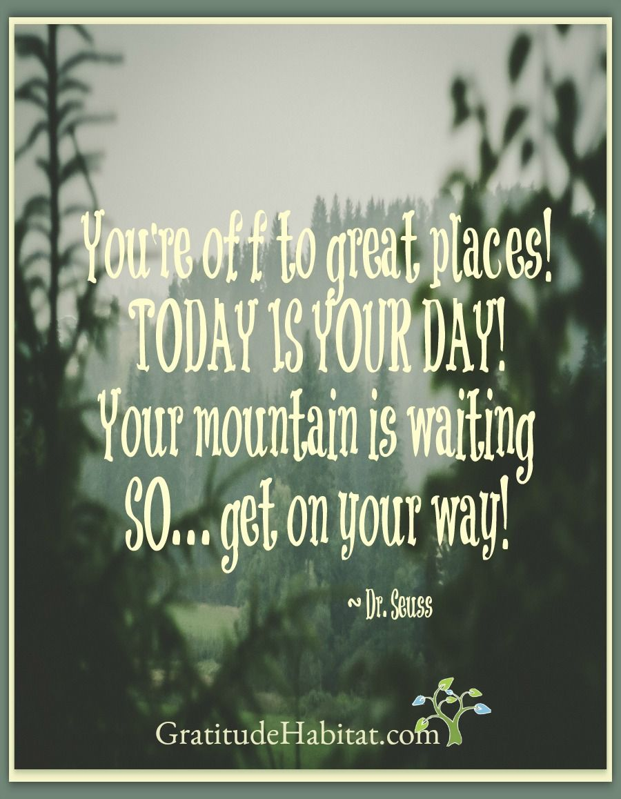 Today Is Your Day Quotes Inspiration And Gratitude Pinterest