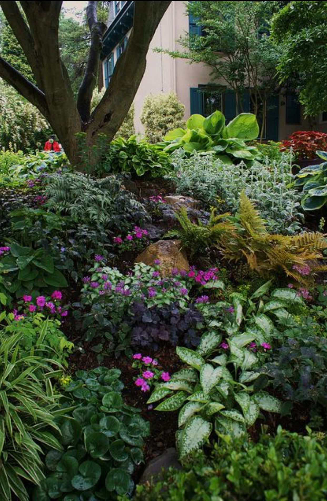 Too Busy But Great Ideas For Greenery That Grows In The Shade Shade Landscaping Shade Garden Design Shade Garden Plants