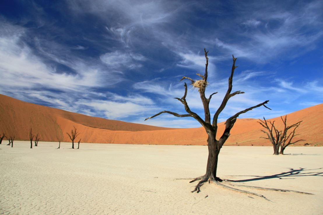 Map Of Oregon Deserts%0A Sossusvlei  u     Deadvlei  Namibia  For further information  a map   u     photos
