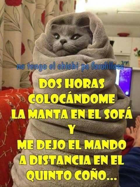 Que Frio Hace Humor En Espanol Gracioso Humor