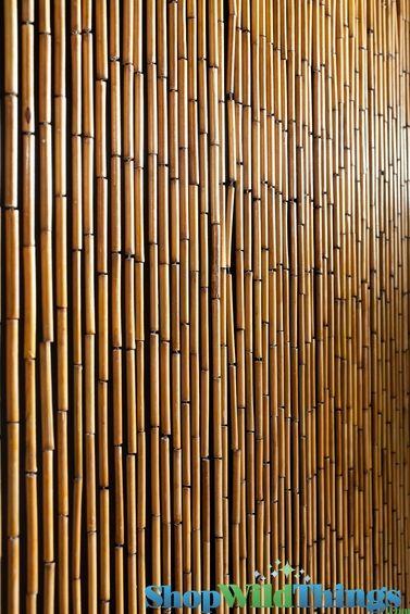 Plain Bamboo Beaded Curtain 32 X 76 60 Strands Bamboo Beaded Curtains Beaded Door Curtains