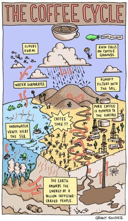 The Coffee Cycle Rain And Coffee Coffee Humor I Love Coffee