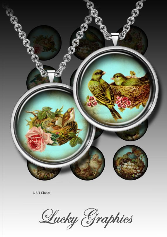 """Digital Collage Sheet - 1,3/4"""" circles for resin jewelry, buttons crafts and magnet crafts - Victorian bird collection"""