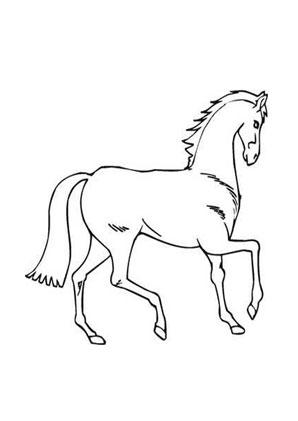 Ausmalbild Araber Pferd Things To Sell Old Things Animals