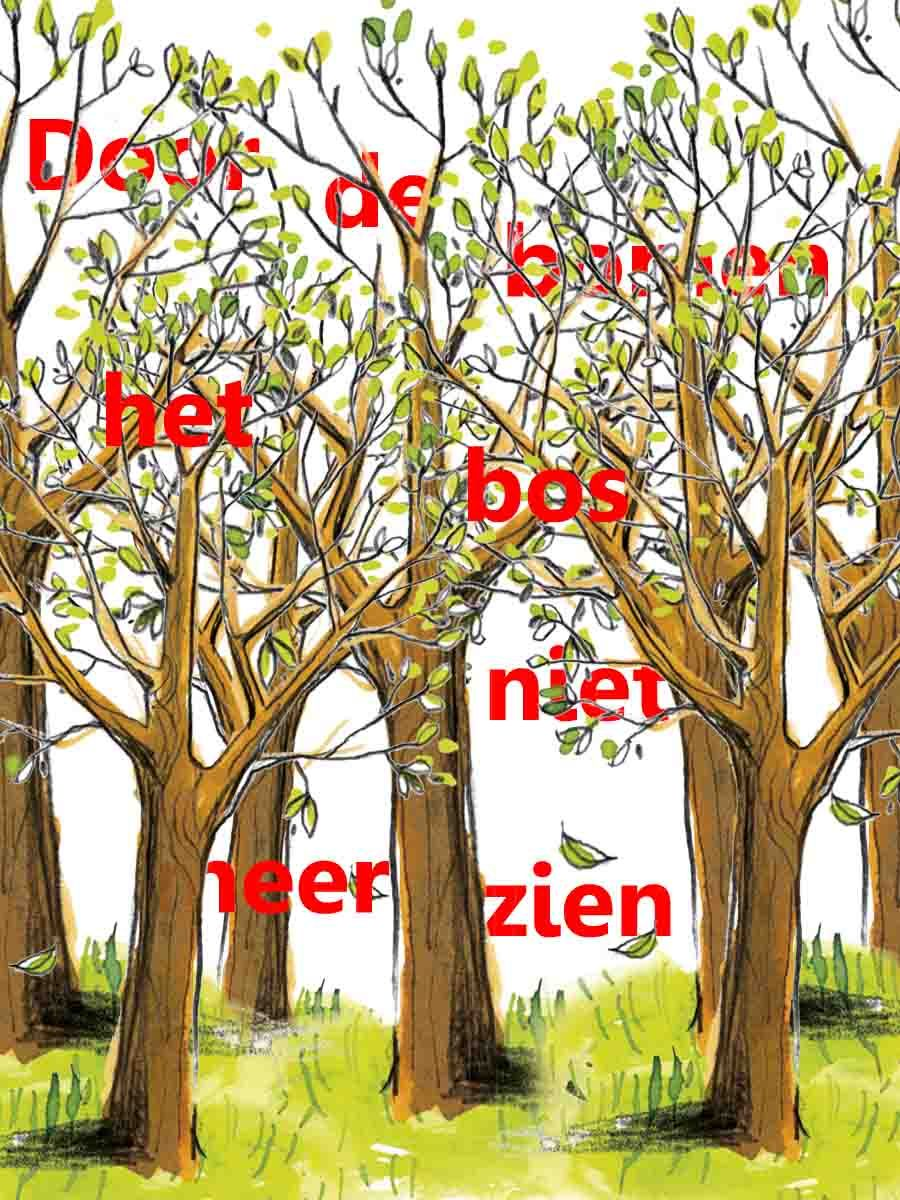 Citaten Over Bomen : Door de bomen het bos niet meer zien citaten spreuken