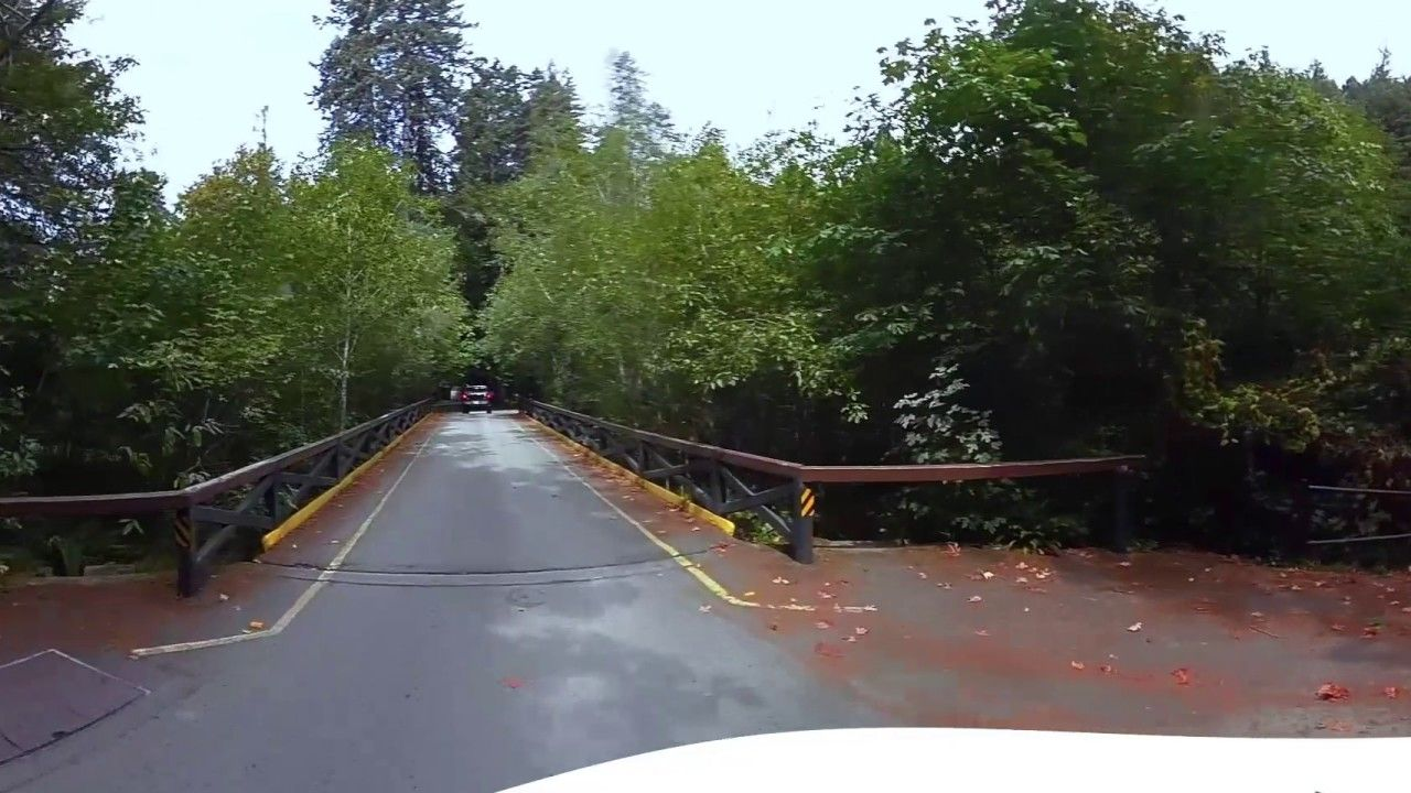 Mill Creek Campground Del Norte Coast Redwoods State Park 360 Video Vi In 2020 State Parks Del Norte Coast Redwood