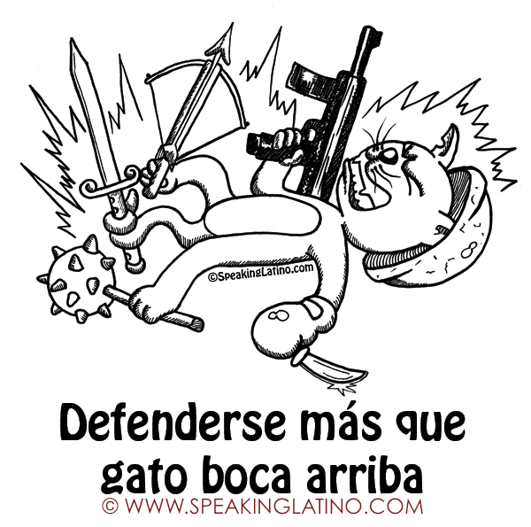 Bad Words In Spanish Puerto Rican Slang