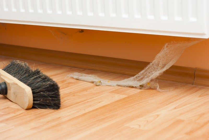 What Causes #Dust Bunnies in Your #Home?