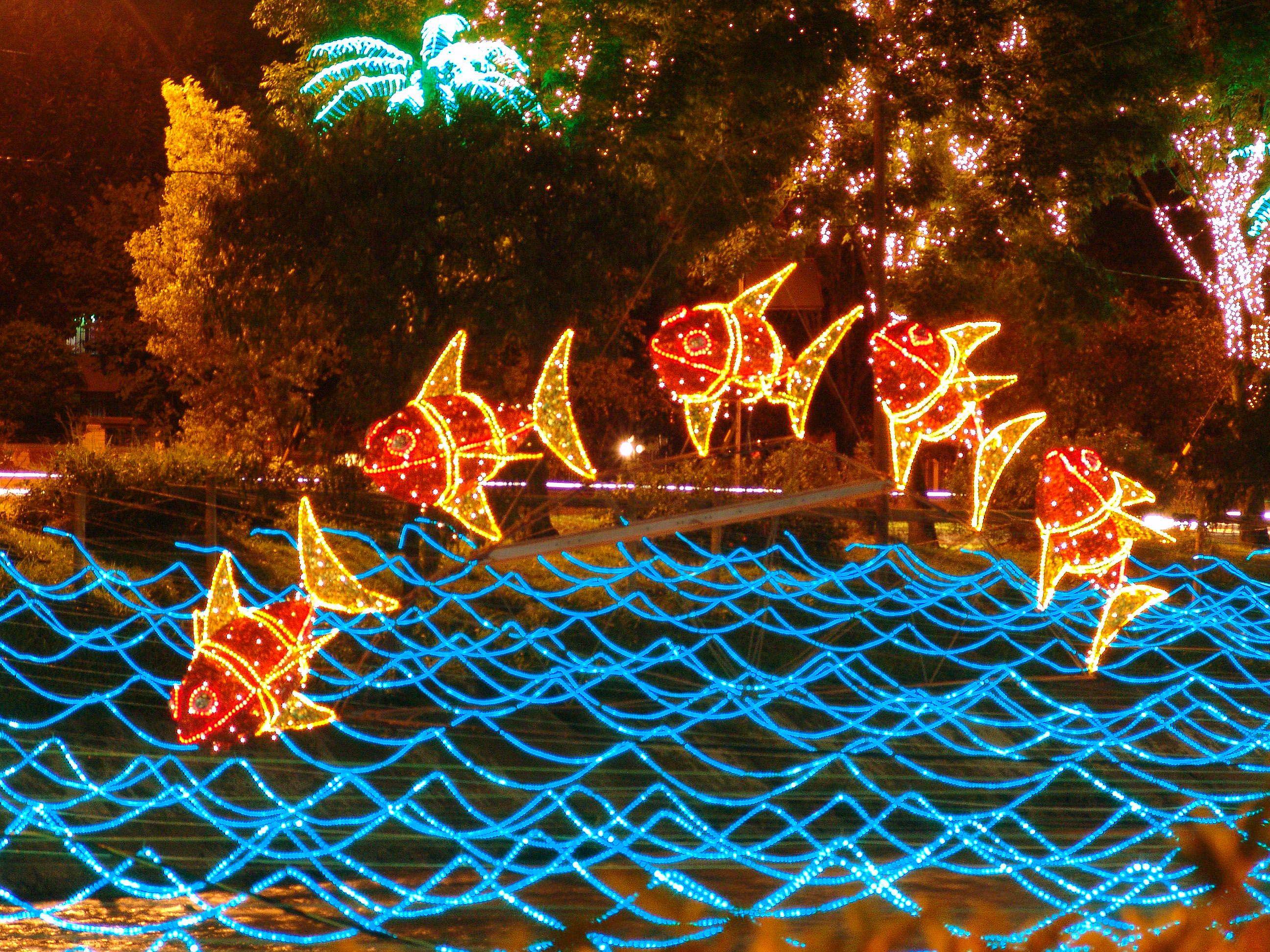 Navidad Medellín. Alumbrado Navideño. Iluminación Navidad.