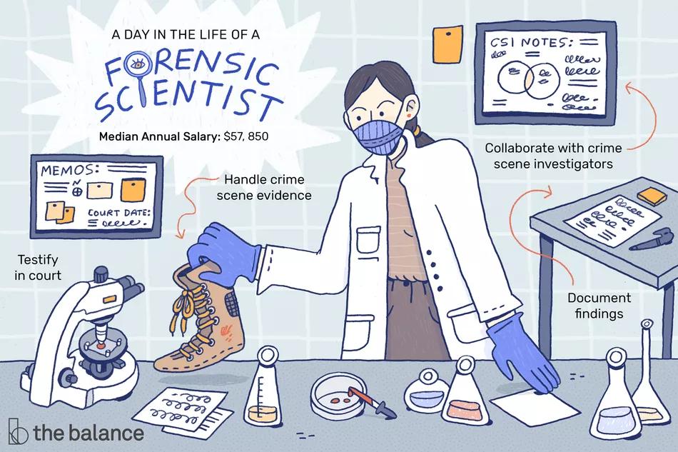 Forensic Science Technician Job Description Salary Skills More Forensic Science Forensics Science Classroom