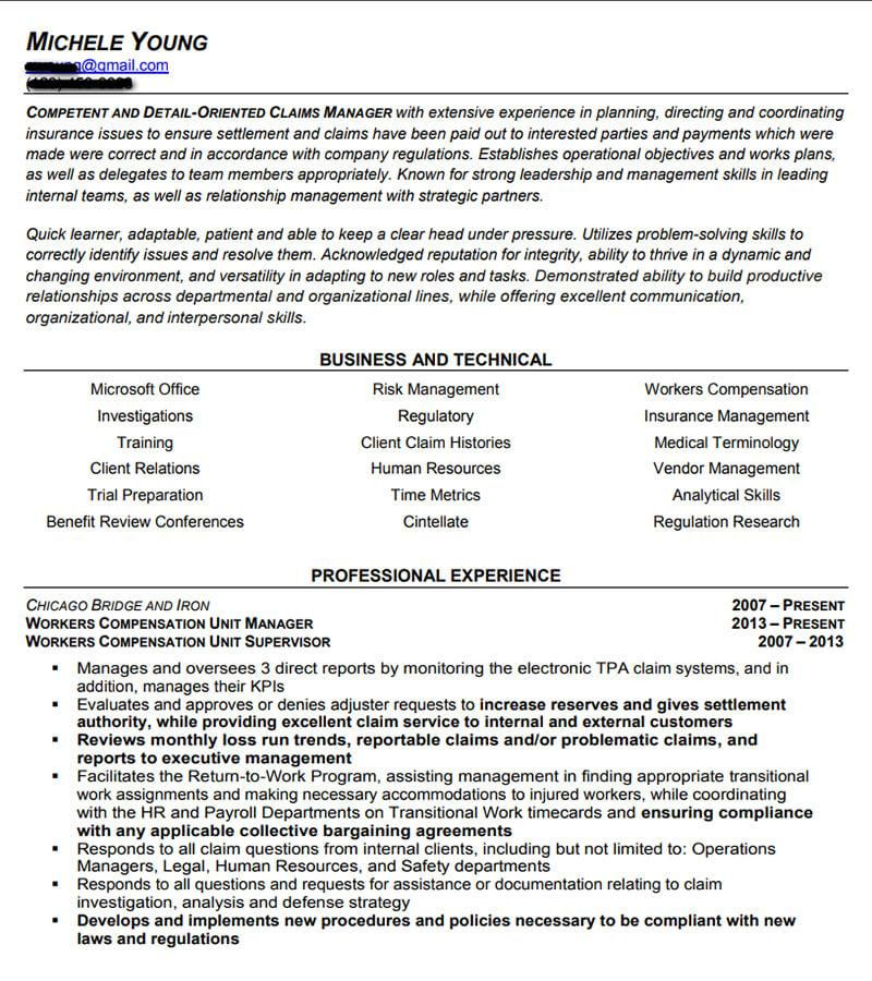 Professional And Executive Resume Examples I Top Resume Samples