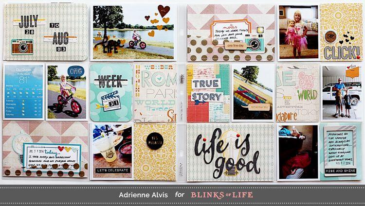 Adrienne Alvis for Blinks of Life