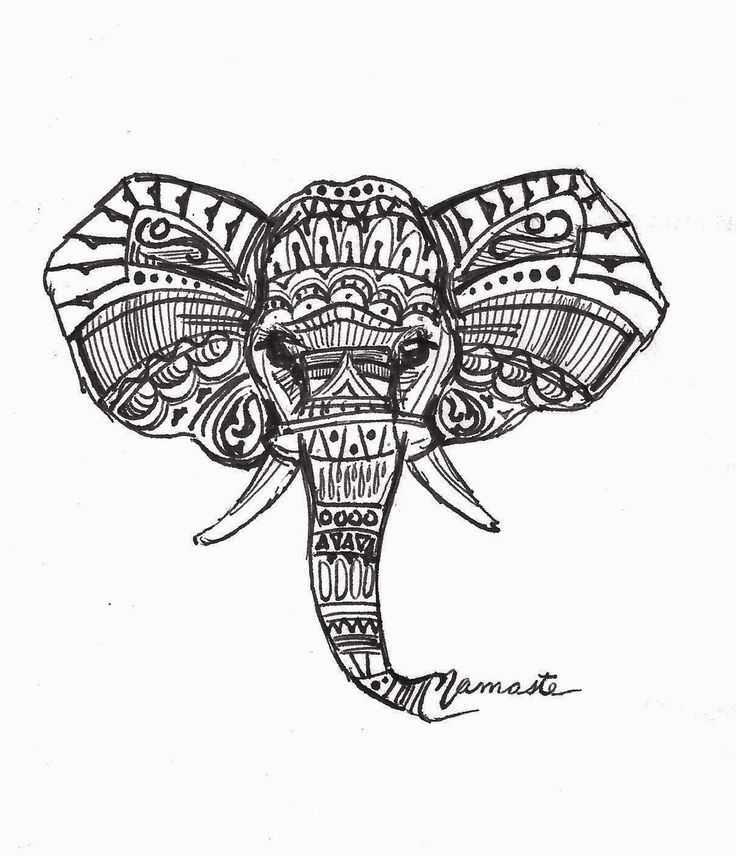 Indian Elephant Line Drawing Image result for triba...