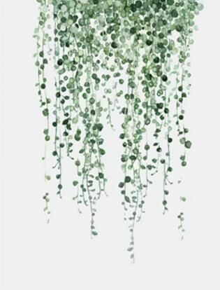 fresh green plants canvas painting fashion watercolor plants living room decor wall art print poster painting YT0069 #spraypainting