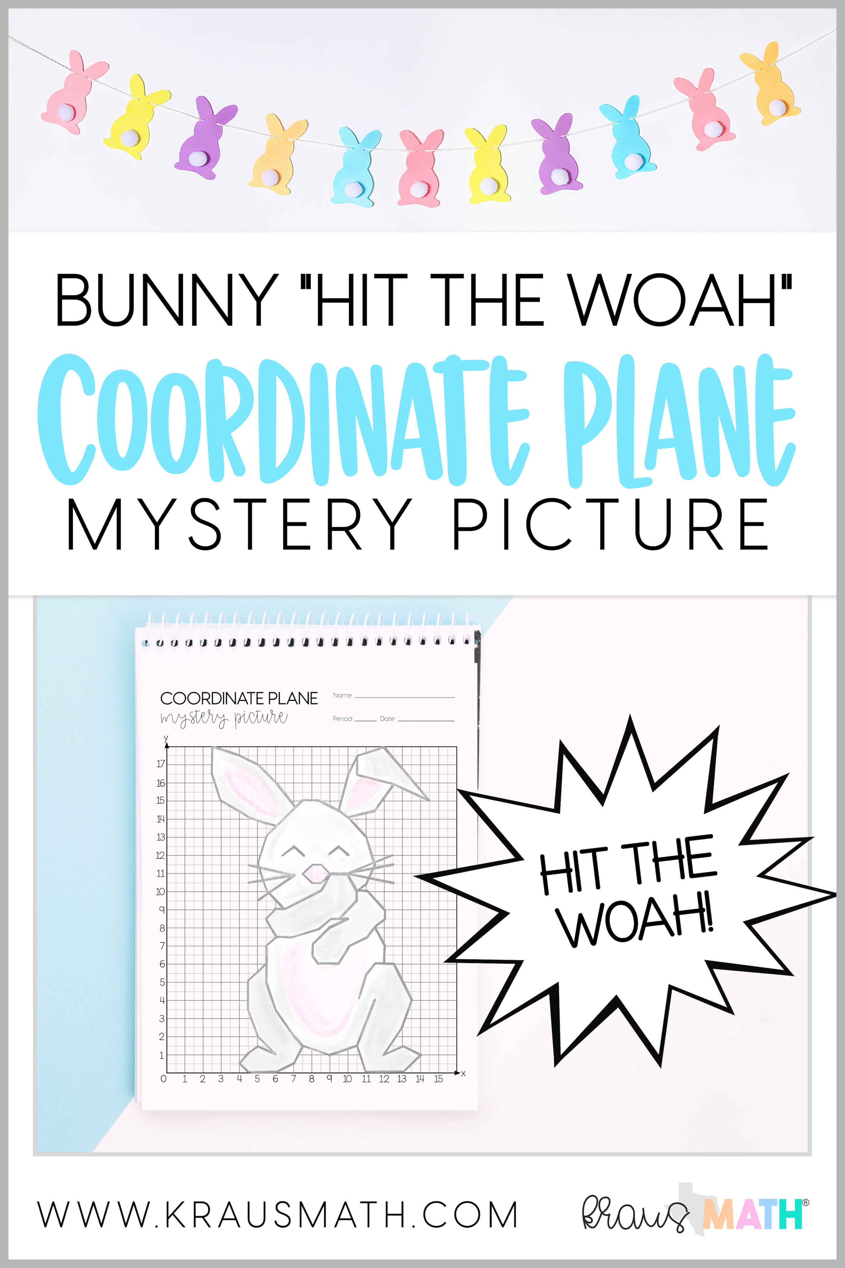 Bunny Hit The Woah Dance Coordinate Plane Mystery
