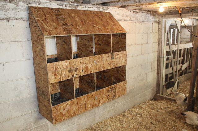 Making Chicken Nest Boxes