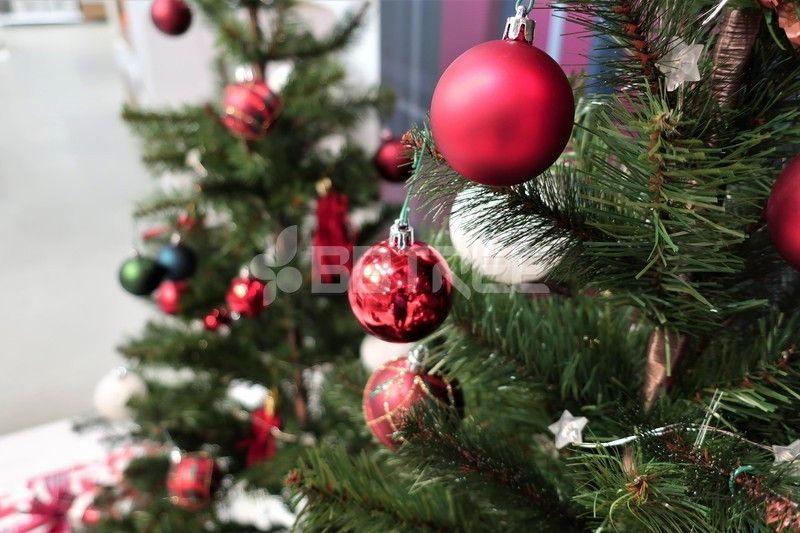 크리스마스 트리 장식 Yanggiri 사진 크리스마스 트리 장식 성탄절 겨울 계절 사물 물건 오브젝트 전나무 배경 크리스마스 트리 크리스마스 트리 장식 크리스마스 리스