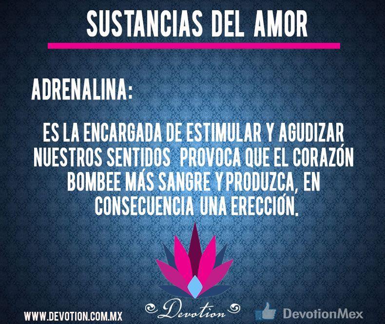 Sustancias del amor: Adrenalina. http://devotion.com.mx/ #amor #sentidos #adrenalina #sexo #corazón #devotion