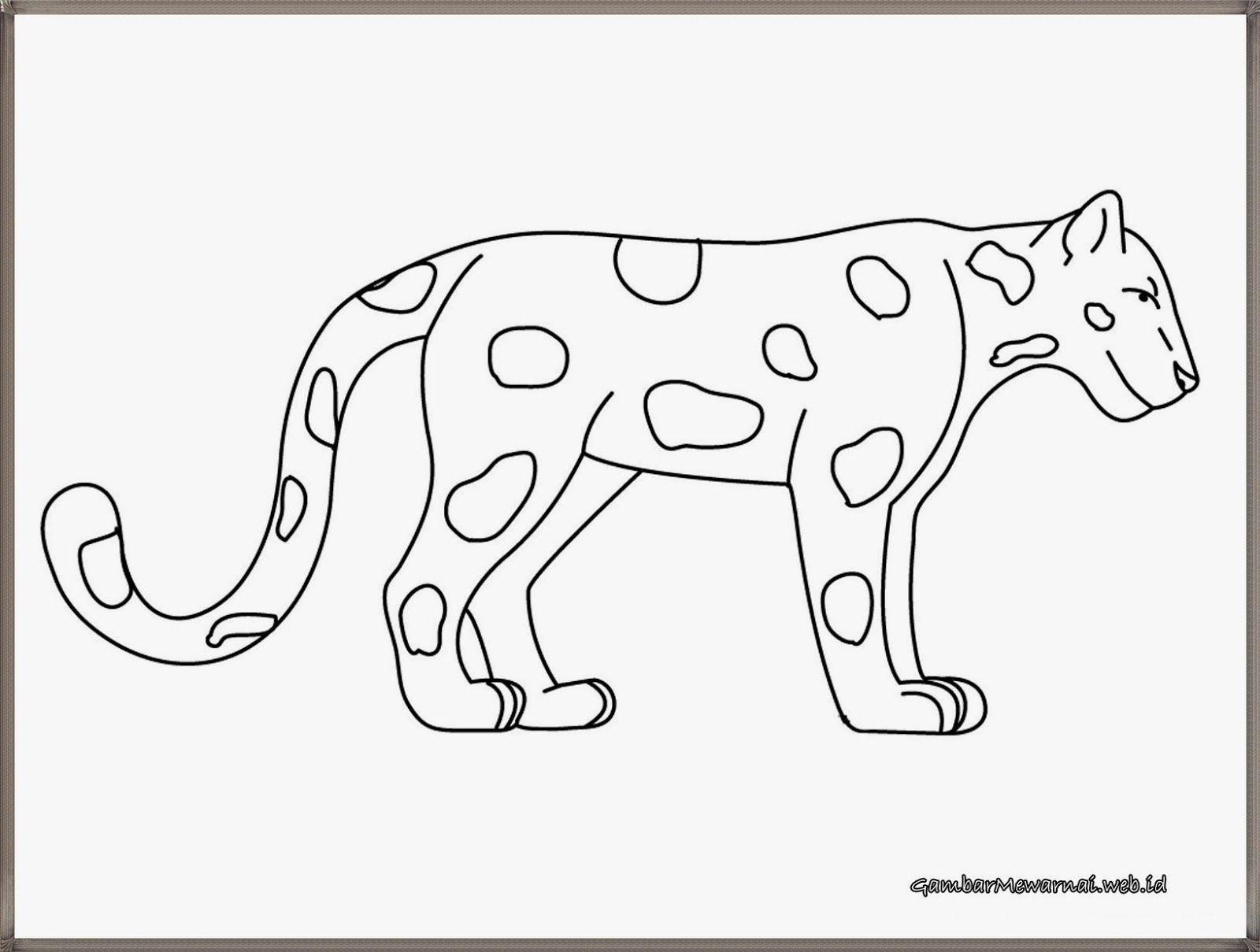 Gambar Bintang Harimau Untuk Mewarnai Gambar Hewan Halaman
