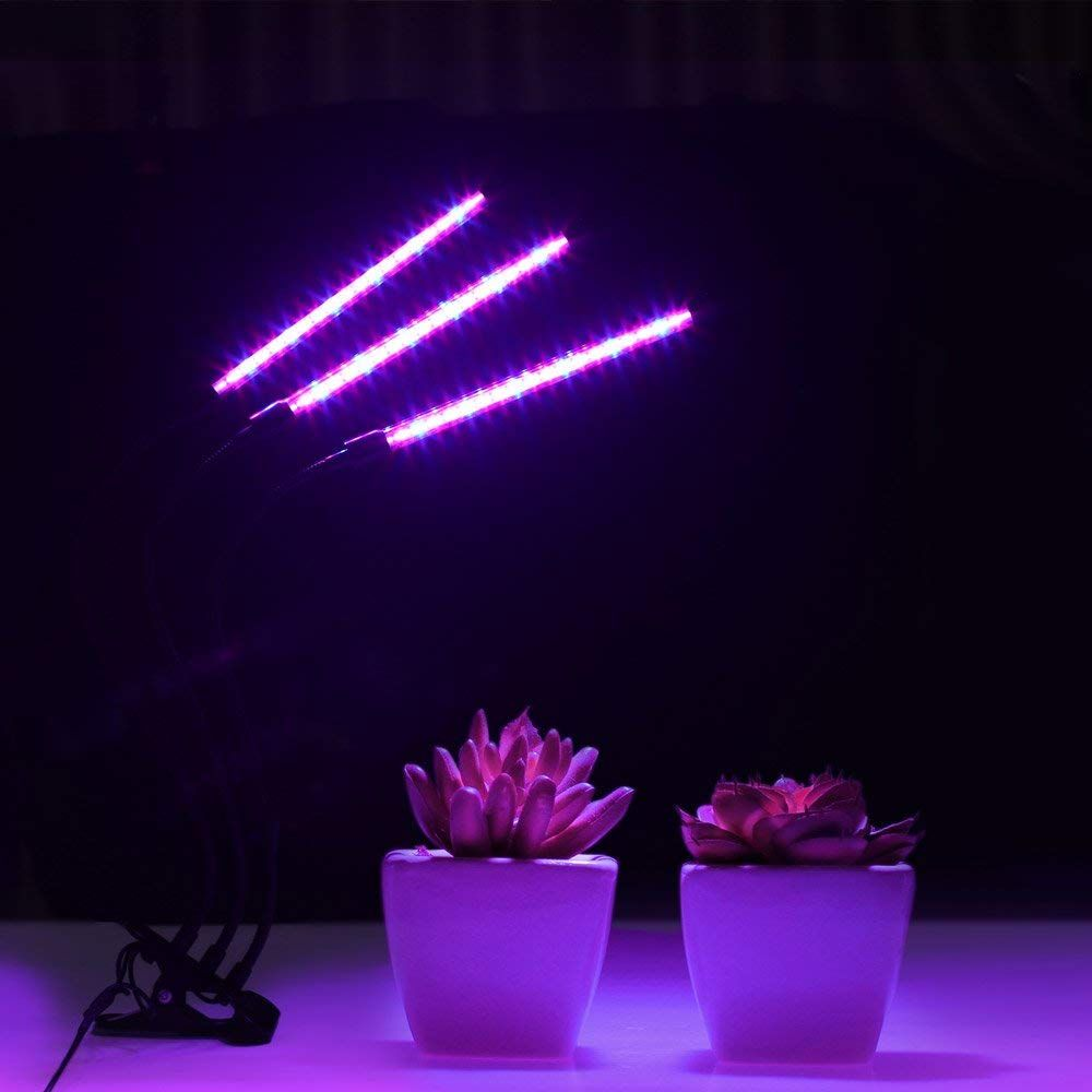 Do You Need Full Spectrum Grow Lights Depending On The 640 x 480