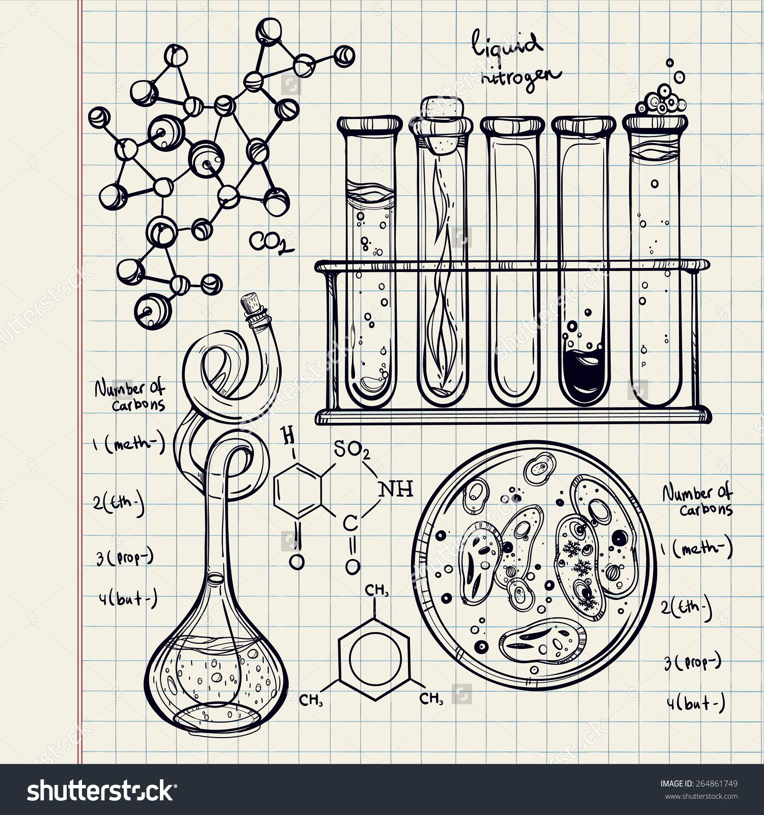 Hand Drawn Science Beautiful Laboratory Icons Sketch Vector Illustrationck To School