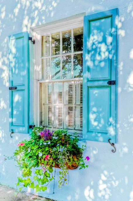 Can T Beat Those Mid Week Blues Charleston Window Shutters Windows Window Box