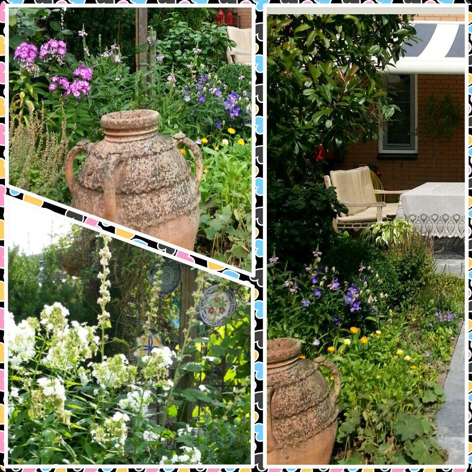 Our very small garden