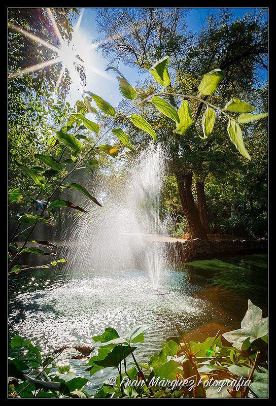 El Estanque   Flickr - Photo Sharing!