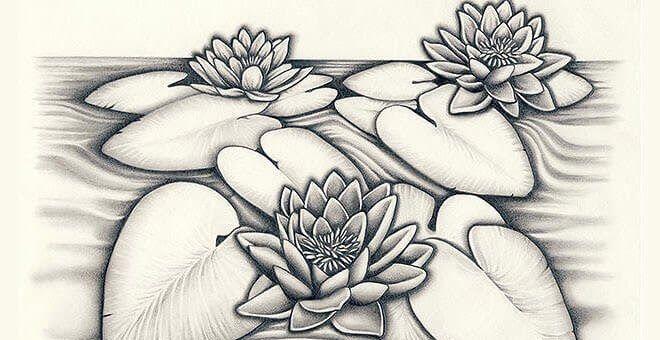 Paling Keren 13 Download Gambar Bunga 3d 15 Gambar Sketsa Bunga Dari Pensil Yang Mudah Dibuat 100 Wallpaper Keren Whats Lukisan Bunga Menggambar Bunga Lukisan