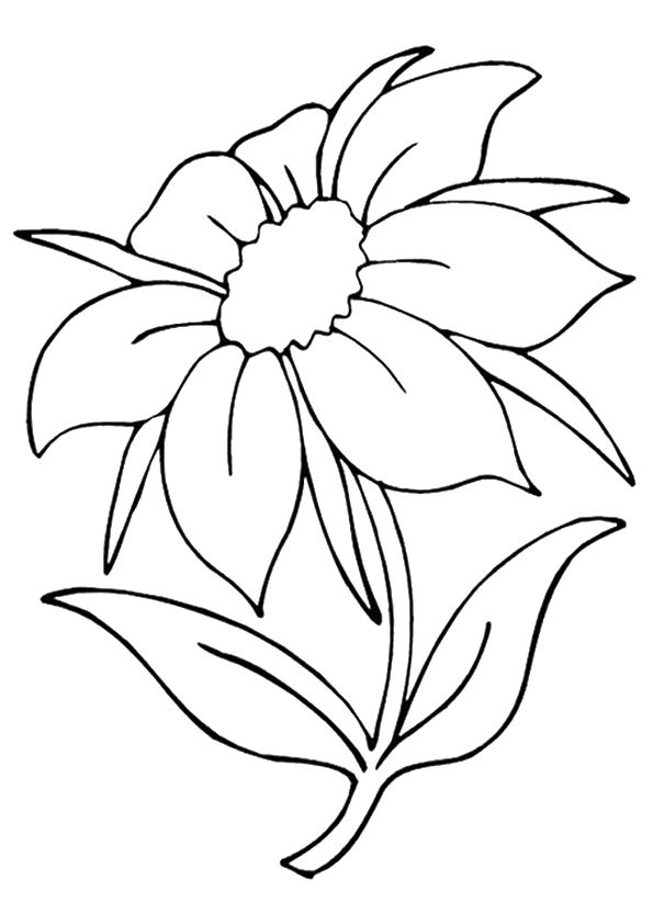 Spring Flowers Coloring Pages Momjunction Designs Collections
