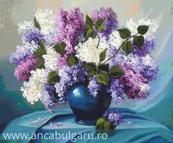 Imagini pentru anca bulgaru