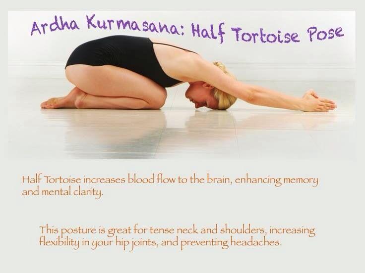 Half Tortoise Pose Bikram Yoga Poses Yoga Benefits Bikram Yoga
