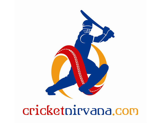 cricket nirana projects to try pinterest cricket