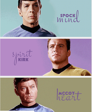 Spock, Kirk and McCoy. Mind, Spirit and Heart..