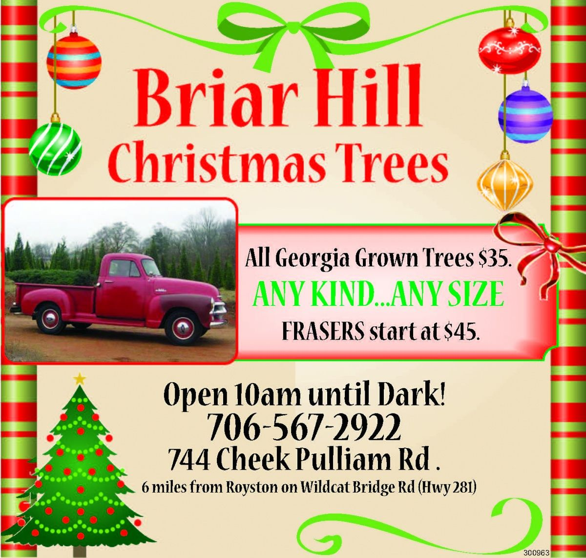 Christmas Tree Farms In North Georgia: All Georgia Grown Trees $35. ANY KIND... ANY SIZE FRASERS