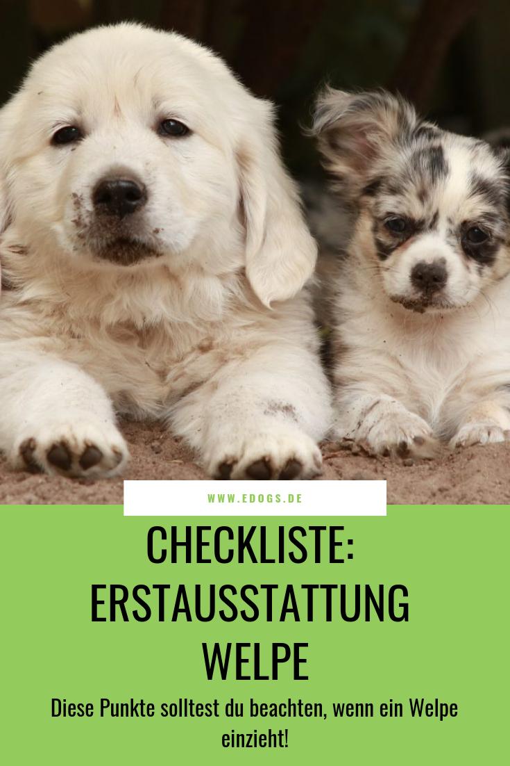 Checkliste Erstausstattung Welpen Hundewelpen Hunde Erziehen