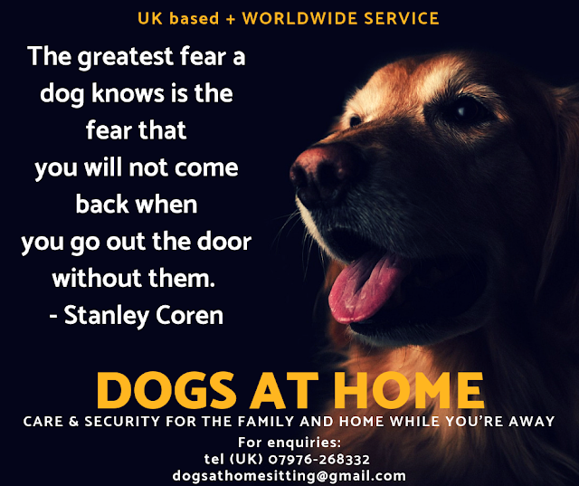 Dogs At Home Dogs At Home Dog House Sitting Service Worldwi House Sitting Dog House Dogs