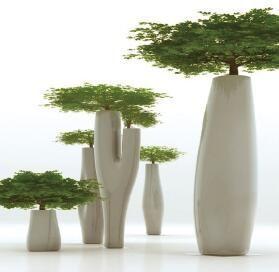 Bastano delle belle piante e delle originali fioriere per cambiare. Giardini Verticali Interni Giardino Piante Bonsai