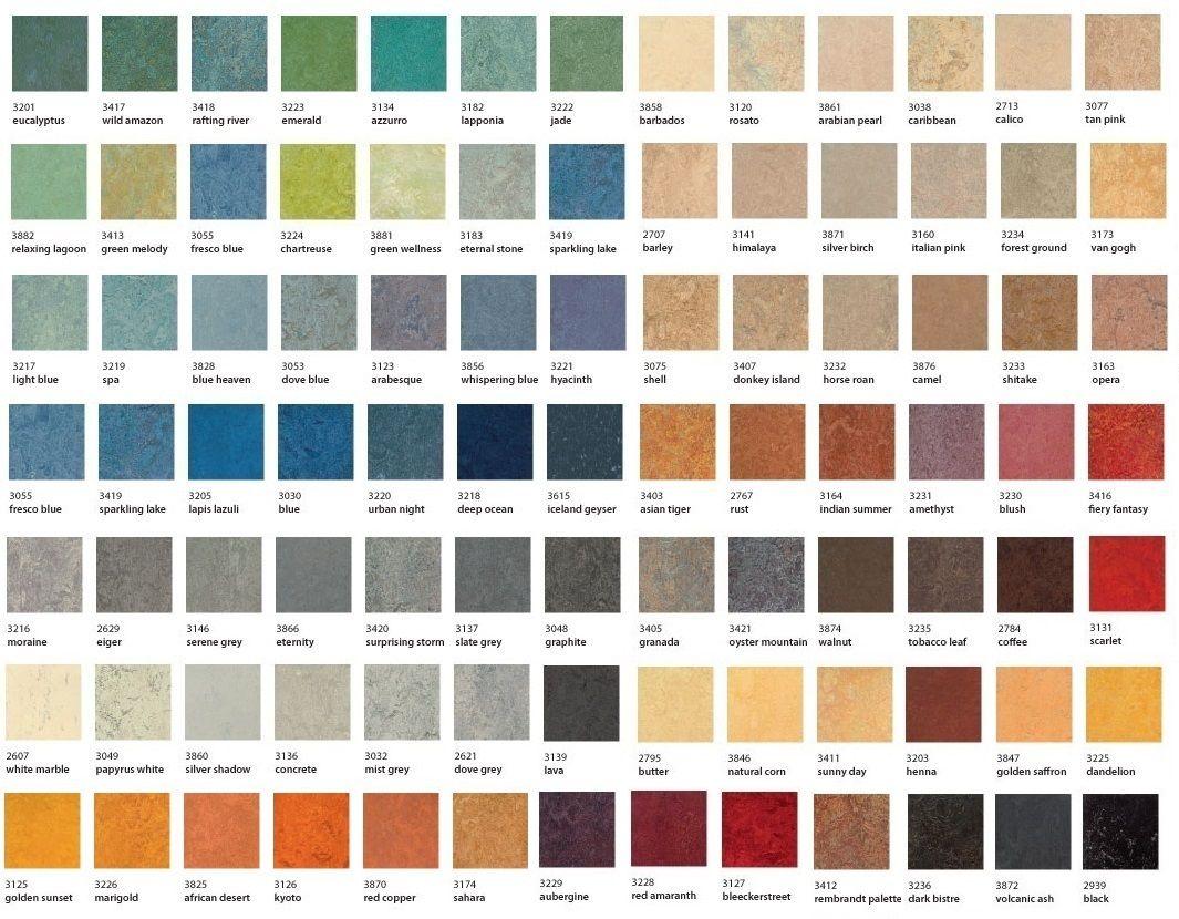 Standard Marmoleum Colors Marmoleum Marmoleum Floors Floor Murals