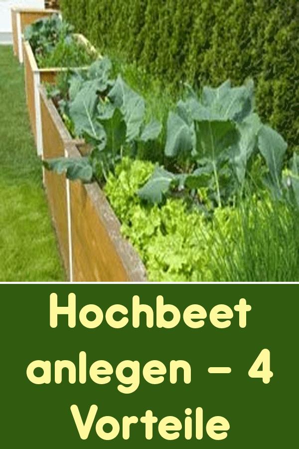 Wenn Sie Sich Ein Hochbeet Anlegen Dann Konnen Sie Von Mehreren Vorteilen Profitieren Welche Vorteile Ein Hochbeet Mit Sich Bringt Vegetables Celery