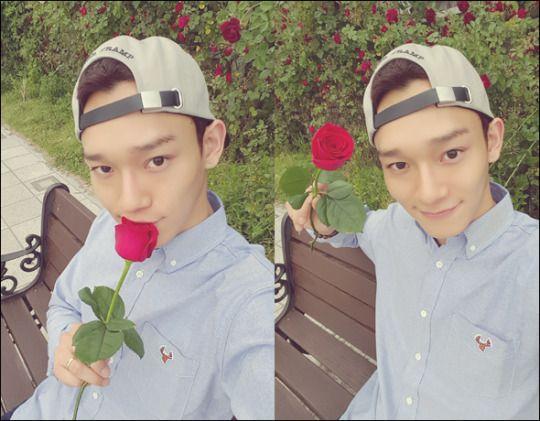 """""""빨간 장미꽃이 예쁘긴 예쁘네요. ㅎㅎ 그래도 저는… 장미꽃보단 EXO-L 이 더 좋은 것 같아요…♡ 받아줄거죠???""""  Translation: """"This red rose is pretty pretty. haha But still, I… like EXO-L even more than roses…♡ Will you accept it???"""""""