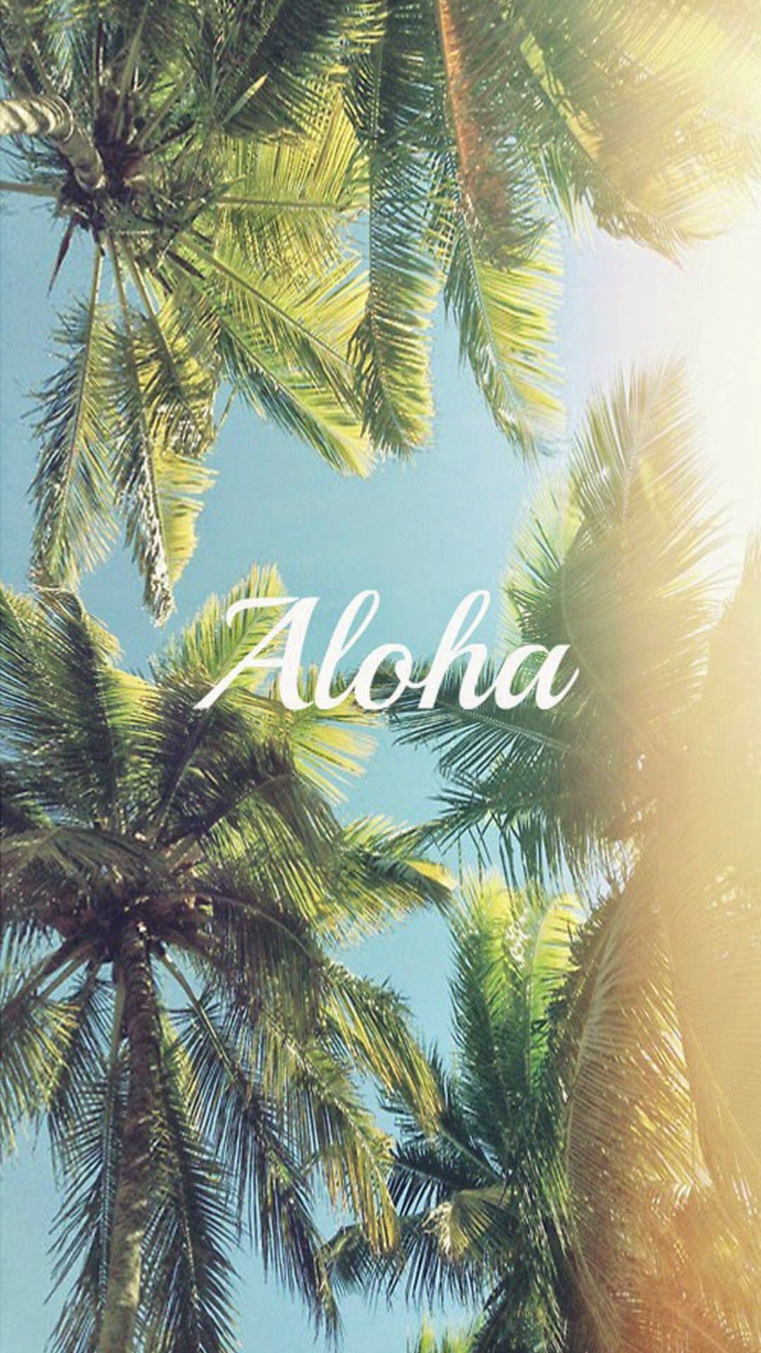 Hd wallpaper tumblr iphone - Download Aloha Palm Trees Iphone 6 Plus Hd Wallpaper