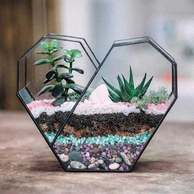 Bonsai Irregular Succulent Glass Geometric Terrarium Planter Flower