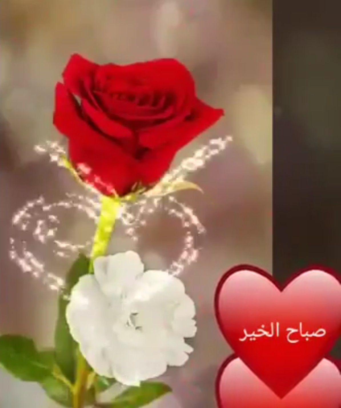 مع نسائم الصباح إليكم هذه الهدية ملأ الله قلبكم بالأنوار وحفظكم من الأخطار وأسعدكم ما دام الليل والنهار وج Good Morning Gif Morning Gif Good Morning