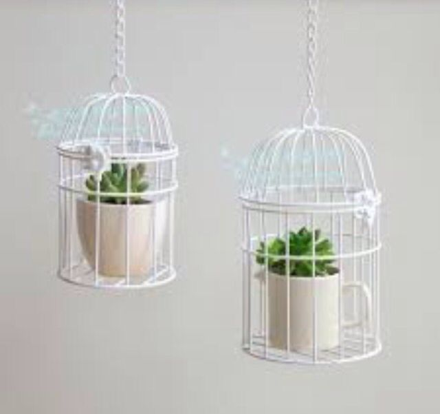 Gabbie per piante Bird cages Pinterest Bird cages