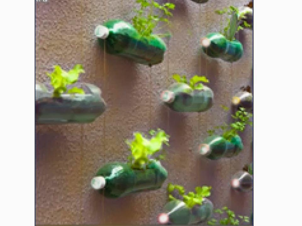 Jardines peque os ideas brillantes para espacios reducidos for Ideas para jardines pequenos