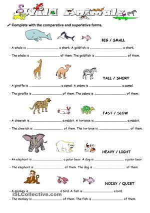 Free Printable Weight Comparison Worksheet for Kindergarten