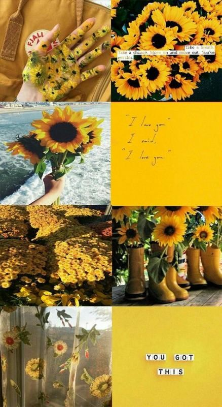 38 Ideas Wall Paper Yellow Iphone Colour