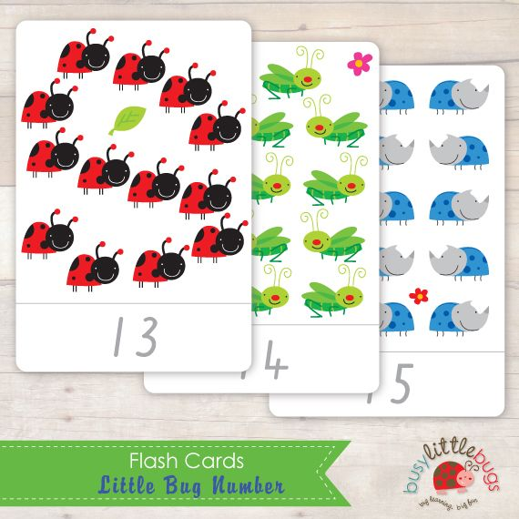 Busy Little Bugs Little Bugs Number Flash Cards - number 1 - 20 ...